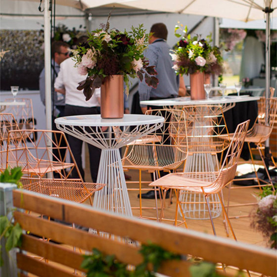 White marquee event exhibition party hire in adelaide arrow junglespirit Images
